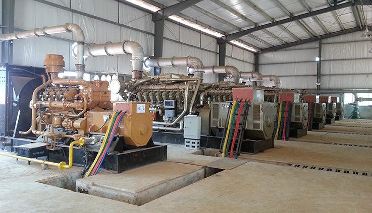 Dual fuel Generator Manufacturers in Nigeria